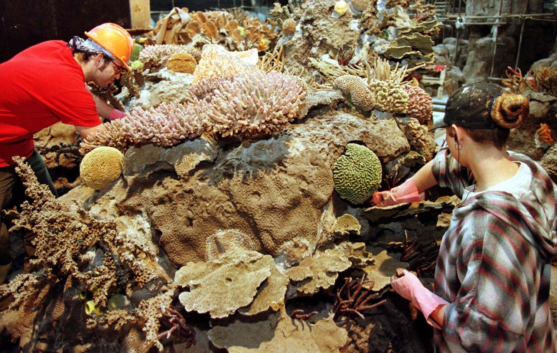 Montagem de recifes para o pavilhão Oceano /Foto: José Manuel Ribeiro - Reuters