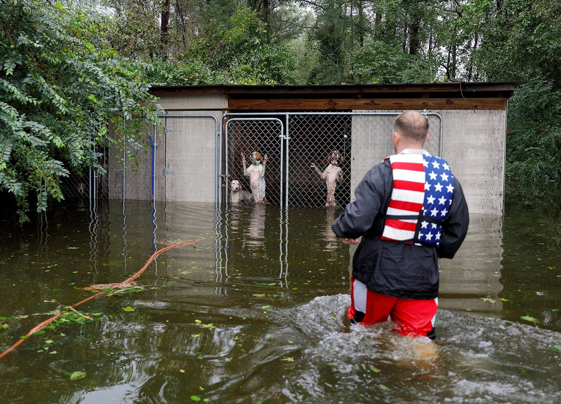 A passagem do furacão Florence inundou a Carolina do Norte e vários foram os voluntários que foram socorrer pessoas e animais /Jonathan Drake - Reuters