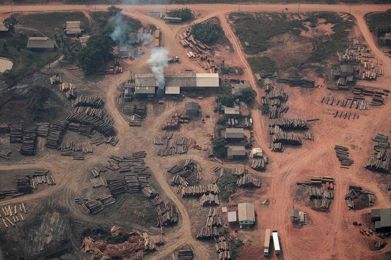 Uma vista aérea de troncos de árvores cortadas ilegamente da floresta da Amazónia perto de Humaita /Ueslei Marcelin - Reuters