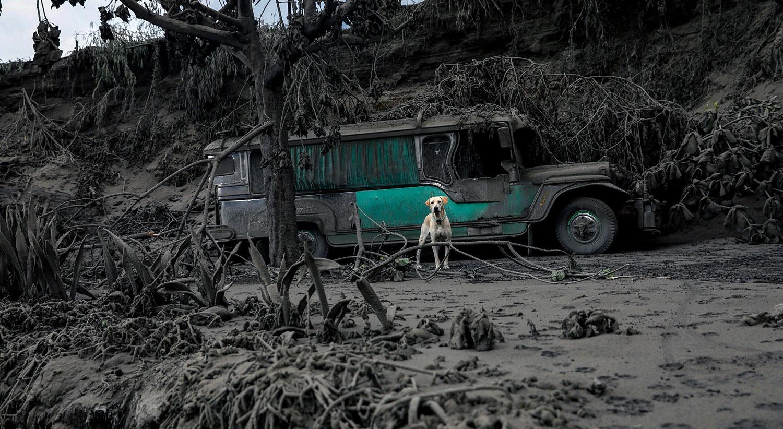 Eloisa Lopez - Reuters
