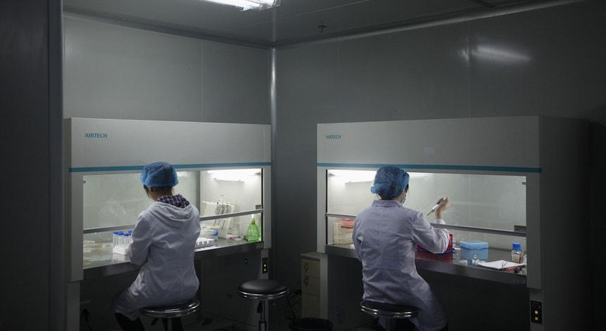 Laboratório em Shenzhen, China