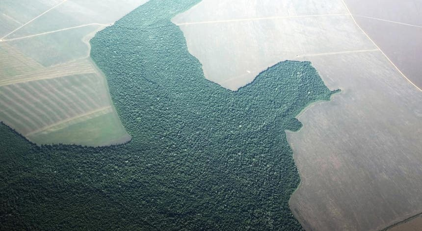 Vista aérea de terras da Amazónia, desflorestadas para dar lugar a terrenos agrícolas, no Estado brasileiro do Pára, julho de 2019