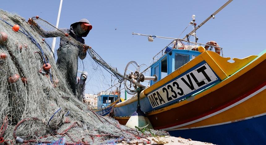 A pesca da sardinha recomeça esta segunda-feira