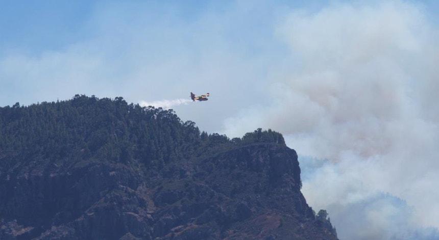 Este incêndio queimou 9.200 hectares de floresta