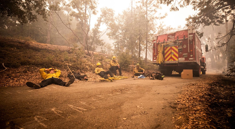 Os bombeiros descansam na floresta fumegante no Bosque de Cascadel depois de combaterem o incêndio toda a noite perto de North Fork na Floresta Nacional da Serra, Califórnia. | Etienne Laurent/EPA