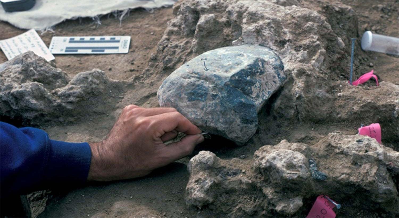 Humanos podem ter chegado  ao continente americano há 130.000 anos