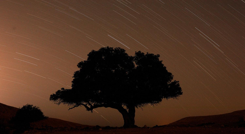 Chuva de meteoros a sul de Israel, 13 de agosto de 2019 /Amir Cohen - Reuters