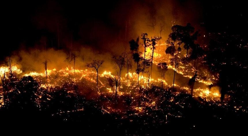 As imagens continuam a desmentir o presidente brasileiro Jair Bolsonaro