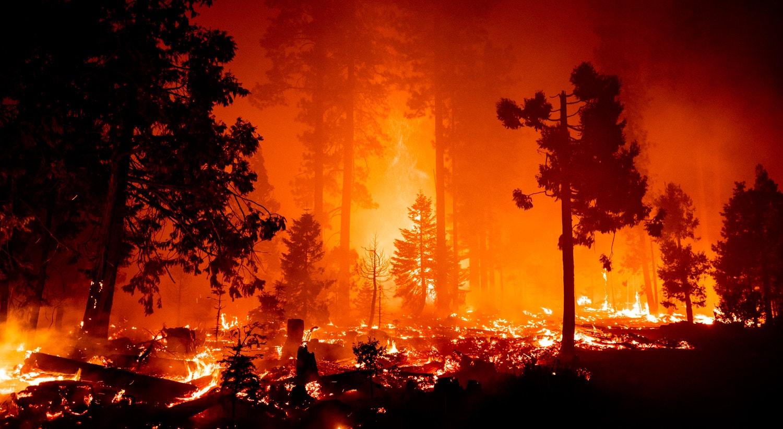 O Creek Fire queima a floresta perto do Lago Shaver na Floresta Nacional da Serra, Califórnia. | Etienne Laurent/EPA