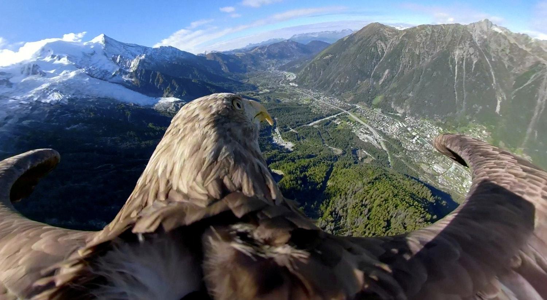 Montanhas em Chamonix, França vistos de uma águia. 8 de outubro de 2019 /Fundação Eagle Wings/Chopard/Handout via Reuters
