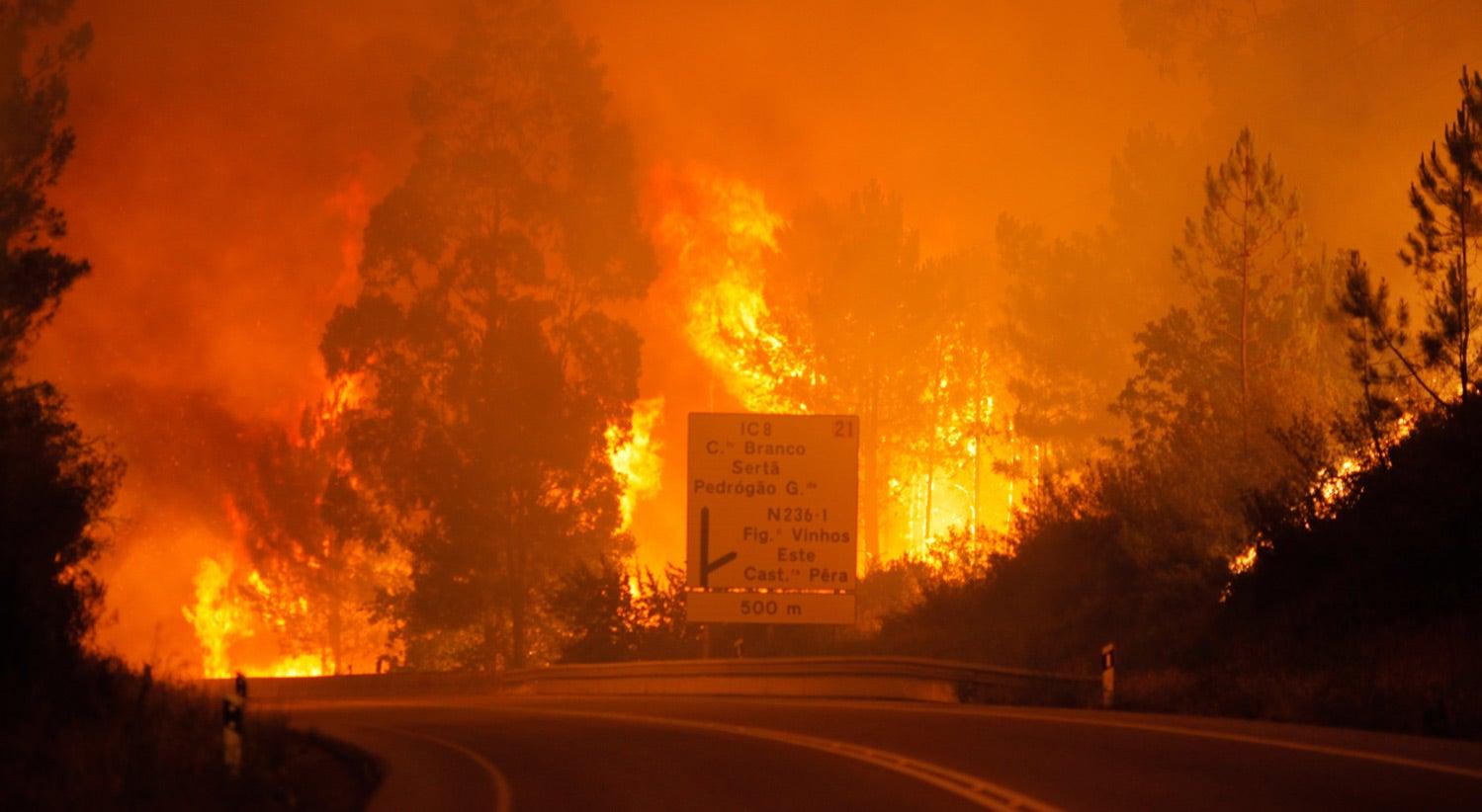 Sobe para 57 o número de mortos em incêndio de Pedrógão Grande