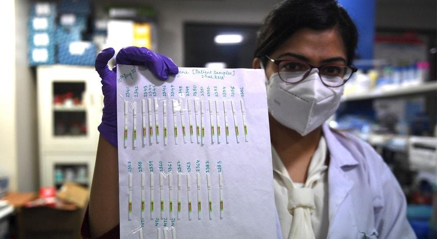 Os profissionais de saúde fazem as contas aos indianos já vacinados