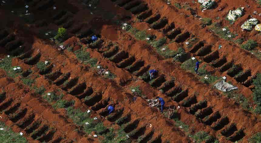 Perda de vidas no Brasil