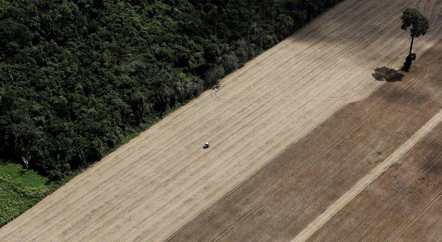 Trator numa terra que era floresta tropical na Amazónia e que foi deitada abaixo para cultivo