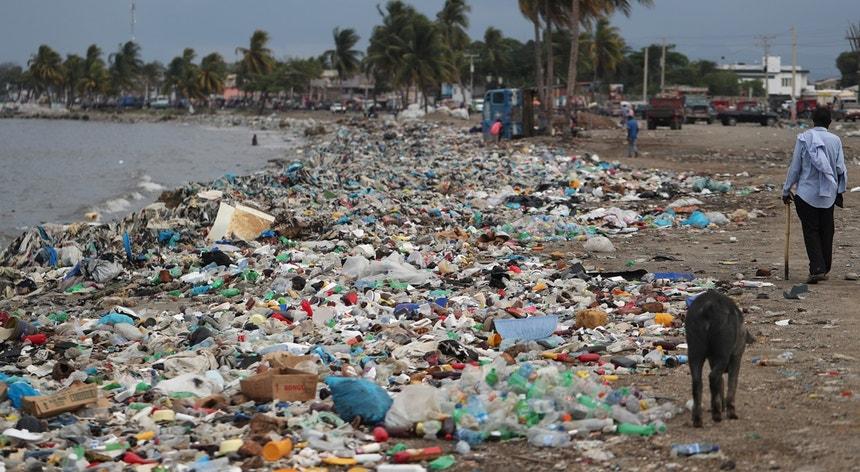 Praia no Haiti