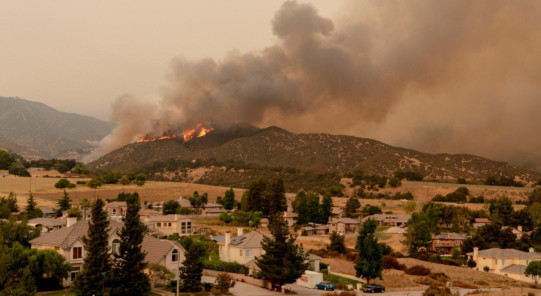 | Floresta Nacional de San Bernardino, Califórnia. |Kyle Grillot /EPA