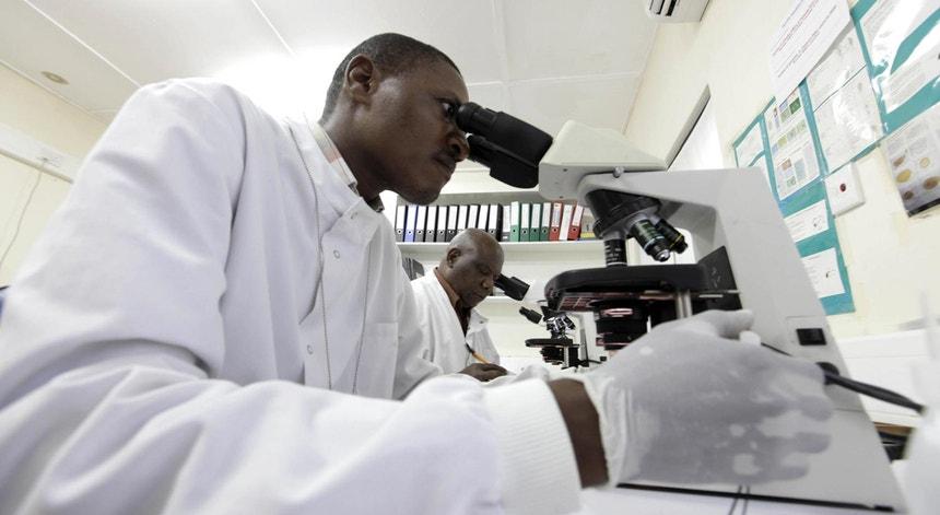 A pesquisa contra a malária no Quénia, inclui estudos sobre a possível erradicação do parasita que causa a doença. A OMS já disse que esse cenário é improvável.