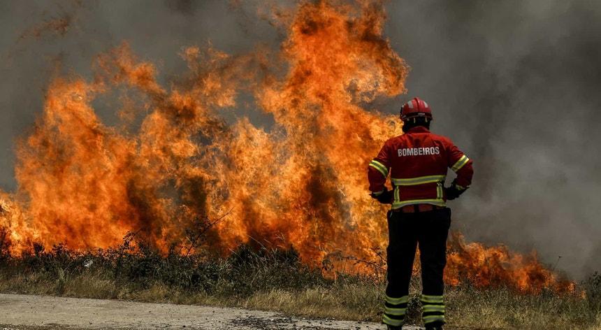 O fogo lavrou durante várias horas em área de mato e seara
