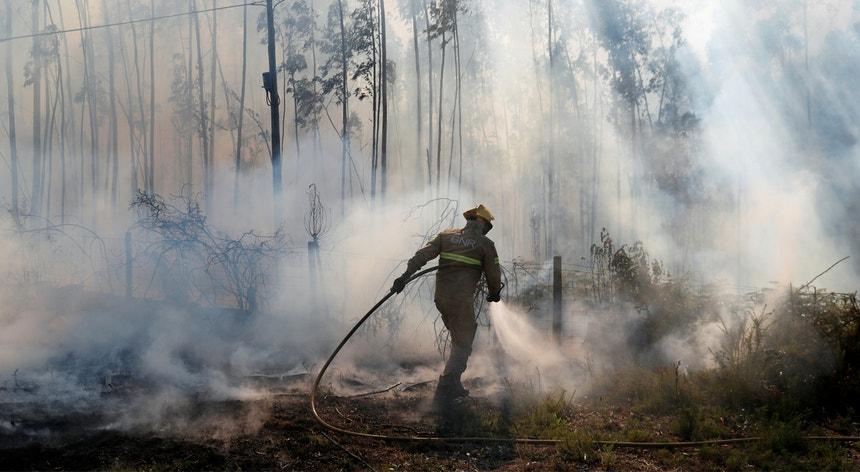 O fogo chegou a mobilizar mais de 200 homens e provocou ferimentos num bombeiro
