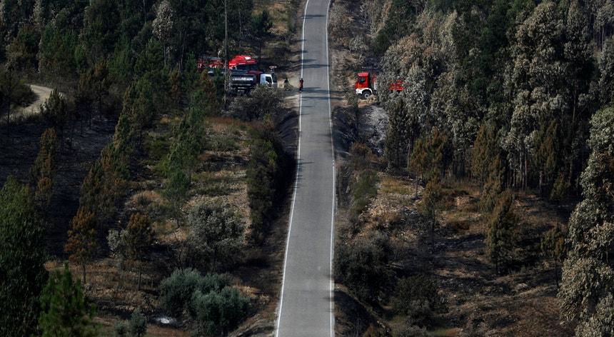 A Autoridade Nacional de Emergência e Proteção Civil pagou 350 mil euros à Foxtrot Aventura, empresa detida pelo marido de uma autarca do PS de Guimarães, e à Brain One