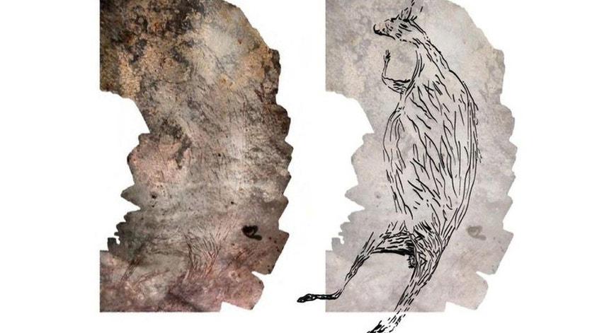 Montagem das fotografias da gravura rupestre do do canguru, datada de há 17.300 anos (esquerda) e a ilustração da obra (direita)