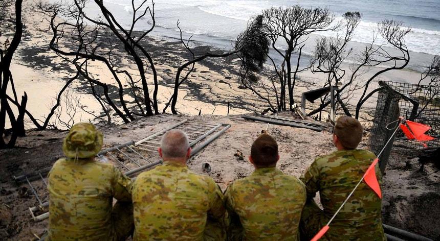 O desespero perante as chamas que consumiram mais de oito milhões de hectares