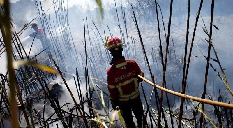 Resultado de imagem para Incêndios: Governo declara situação de alerta entre quarta-feira e domingo