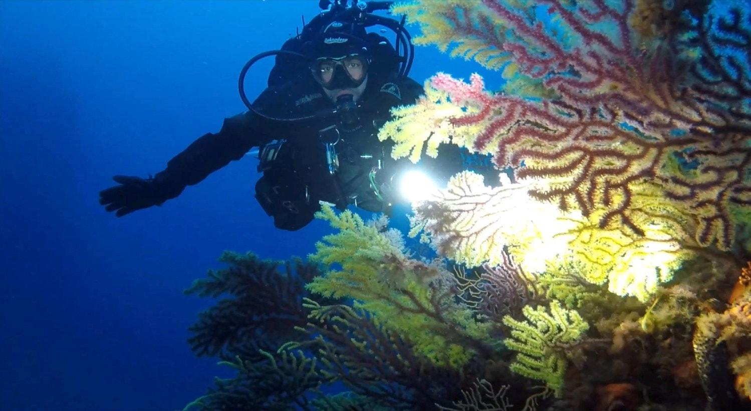 Itália, barreira de coral Secche di Tor Paterno, em abril | Guarda Costeira Italiana - Reuters