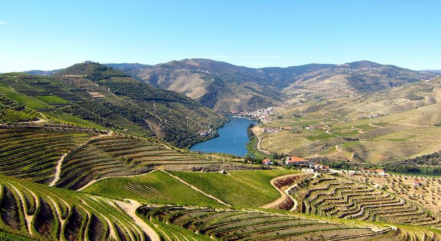 A paragem do turismo levou uma empresa de cruzeiros no Douro a ameaçar com um despedimento coletivo