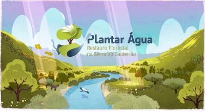 """""""Plantar água"""" na serra do Caldeirão"""