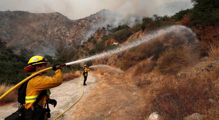 Os fogos já destruíram quase dois milhões de hectares de floresta desde agosto
