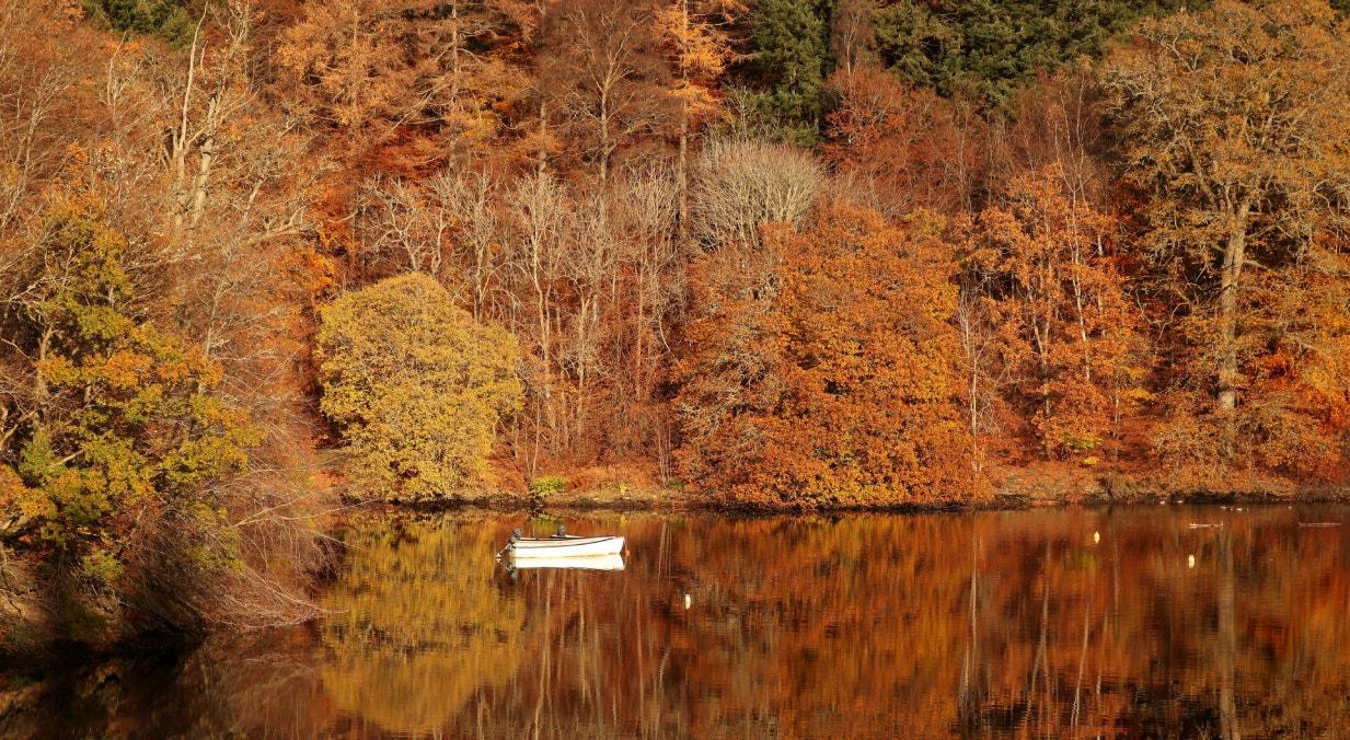 Escócia, Lago de Faskally, em Pitlochry, novembro | Russell Cheyne - Reuters