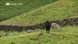 Atlântida Açores