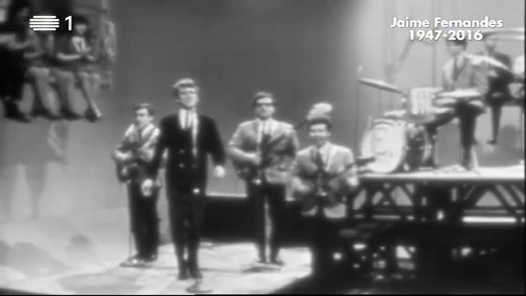 Estranha Forma de Vida - Uma História da Música Popular Portuguesa