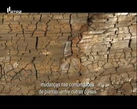Geoparques e Património Paleontológico