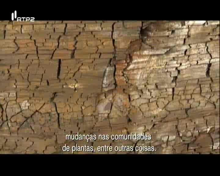 Geoparques e Património Paleontológi...