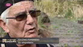 Repórter Madeira - Estradas Regionais