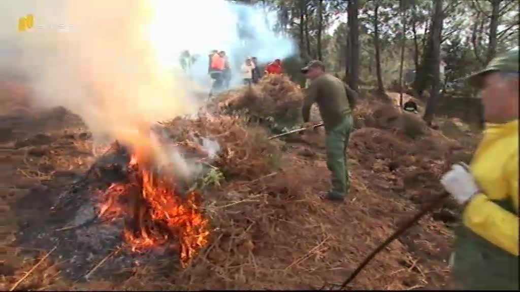 Prevenção Contra Incêndios Florestais