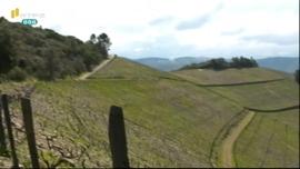 Práticas agrícolas que protegem as terras aráveis