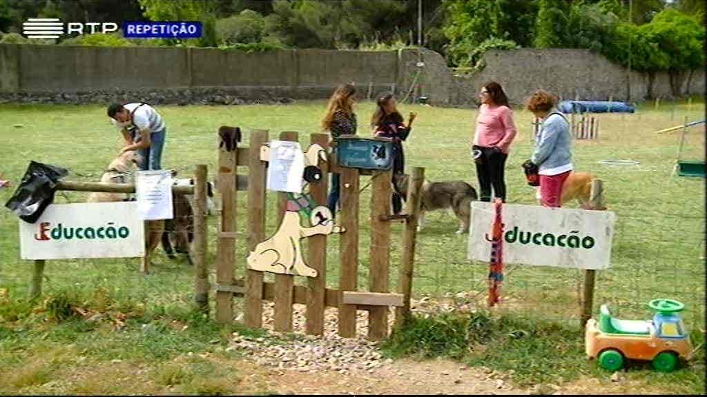 Badoca Safari Park e Educacão...