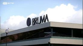 Network Negócios 2017 - Movimar e Bruma