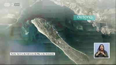 Biosfera - O Futuro dos Golfinhos do Sado
