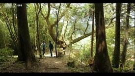 Paraíso - Mata-Jardim José do Canto