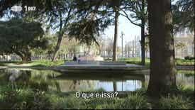 Caminhos de Irmandade - Porto