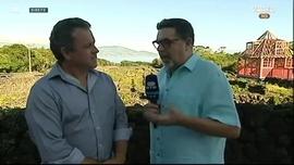 Vinho do Pico, Açores