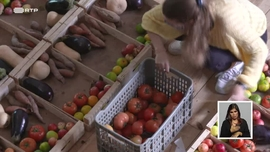 Quem Combate o Desperdício Alimentar?