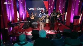 Viva a Música - Viva a Música: José Barros Navegante