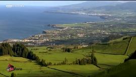 Madeirenses Lá Fora
