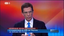 Henrique Veiga-Fernandes
