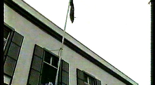 Hastear da Bandeira da CEE